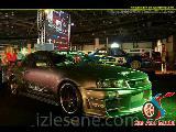 Nissan Skyline Show
