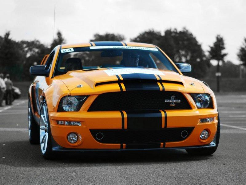 Shelby GT500 wallpaper